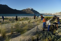 hout_bay_dune_project1
