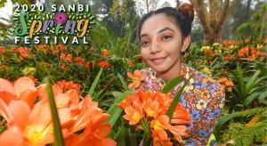 sanbi_2020_spring_festival
