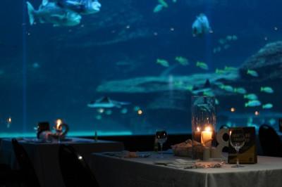 two_oceans_deep_blue_dinners