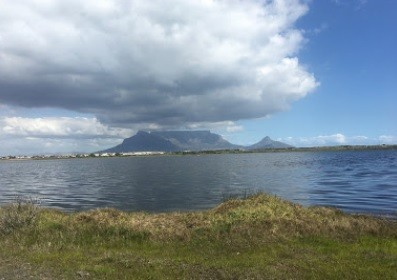 Table Bay Nature Reserve: Rietvlei Section