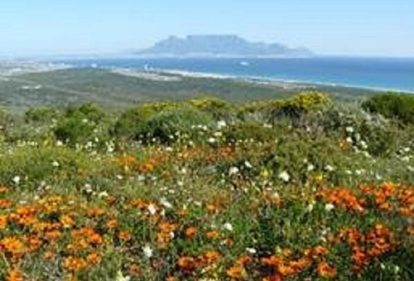 Western Cape declares five new Provincial Heritage Sites