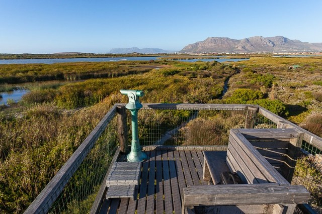 False Bay Nature Reserve : Rondevlei