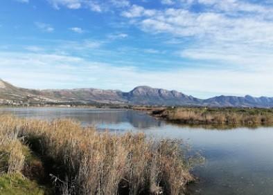 Zandvlei Estuary Nature Reserve