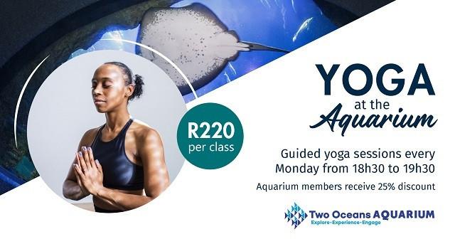 Yoga at the Aquarium