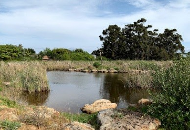 Botterblom Nature Reserve